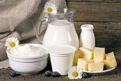 Prodotti lattier-caseario rurali Fotografie Stock