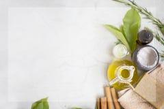Prodotti organici dello skincare flatlay con lo spazio della copia Fotografia Stock Libera da Diritti