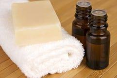 Prodotti organici di cura del corpo Fotografie Stock Libere da Diritti