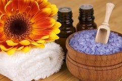 Prodotti organici di cura del corpo Fotografie Stock
