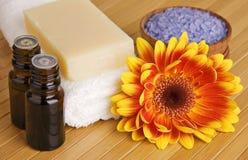 Prodotti organici di cura del corpo Fotografia Stock Libera da Diritti