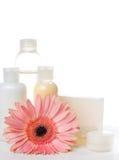 Prodotti per la stazione termale, la cura del corpo e l'igiene Fotografie Stock Libere da Diritti
