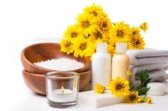 Prodotti per la stazione termale, la cura del corpo e l'igiene Immagine Stock Libera da Diritti