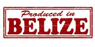 Prodotto a Belize Fotografia Stock Libera da Diritti