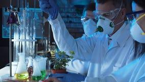 Prodotto chimico di gocciolamento della gente in pianta fotografia stock libera da diritti