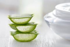 Prodotto cosmetico naturale sano delle fette di erbe di vera dell'aloe con crema Fotografia Stock