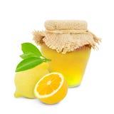 Prodotto del limone Fotografia Stock