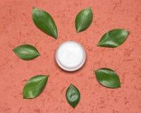 Prodotto di cura di pelle con i filtri UV naturali Fotografia Stock