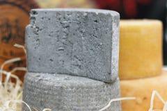 Prodotto ecologico naturale del formaggio Immagine Stock Libera da Diritti