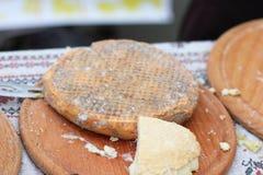 Prodotto ecologico naturale del formaggio Fotografia Stock