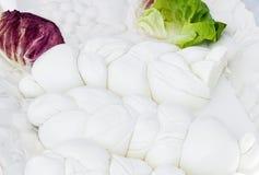 Prodotto lattiero-caseario tipico di Mozzarella di Bufala della campania regio immagini stock libere da diritti
