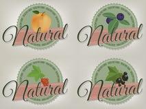 Prodotto naturale, etichette sane dell'alimento. Fotografia Stock Libera da Diritti
