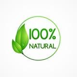 Prodotto naturale, struttura rotonda verde con le foglie Immagini Stock Libere da Diritti
