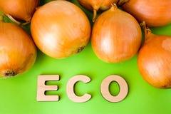 Prodotto o alimento di Eco della cipolla La lampadina delle cipolle è su fondo verde con le lettere di legno di eco del testo Ese Immagini Stock