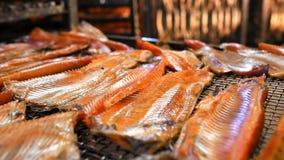 Produção da fábrica dos peixes filme