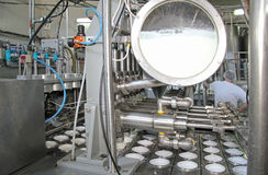 Produção de iogurte imagens de stock