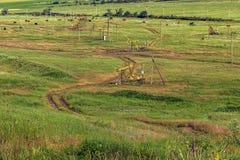 Produção de petróleo e agricultura Fotos de Stock Royalty Free