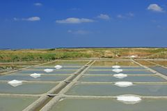 Produção de sal do mar, França fotos de stock
