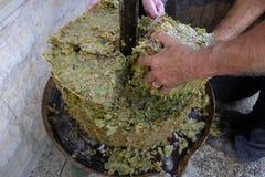 Produção de vinho caseiro Fotografia de Stock Royalty Free