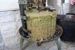 Produção de vinho caseiro Imagens de Stock