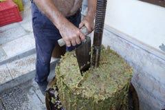Produção de vinho caseiro Imagem de Stock
