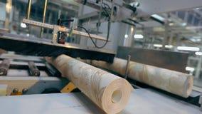 Produ??o de papel de parede, um rolo do papel de parede em uma linha do transporte, o processo final para a produ??o de papel de  video estoque