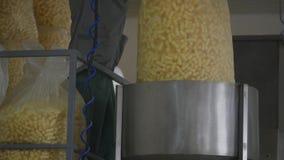 Producción de la fábrica de palillos del maíz dulce metrajes
