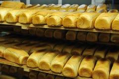 Producción de la fábrica del pan Imágenes de archivo libres de regalías