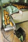 Producción de la fábrica del pan Fotos de archivo