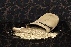 Producción de los granos para la cerveza industrial Imagen de archivo