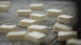 Producción de mermelada producci?n del caramelo Producci?n de dulces esmaltados Formación de la mermelada transportador producci? almacen de video