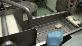 Producción de productos semielaborados de pescados metrajes