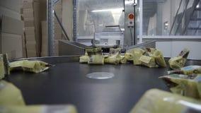 Producción de requesones en fábrica Producción de productos lácteos Productos lácteos en transportador almacen de video