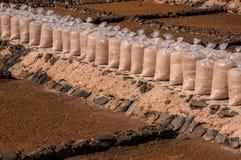 Producción de sal en Fuerteventura, islas Canarias imágenes de archivo libres de regalías