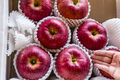 Producción muy grande del mercado: Manzanas Fotos de archivo