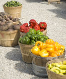 Produce. Assortment of fresh fall produce in baskets Royalty Free Stock Photography