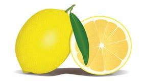 Produce, Fruit, Citrus, Citric Acid royalty free stock image