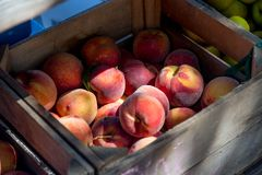 Produce, Fruit, Peach, Local Food royalty free stock image