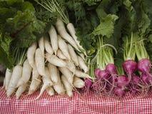 Produce - organic daikon and beets Stock Image