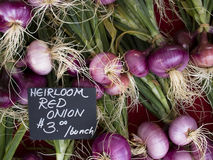 Produce - organic red onions background royalty free stock image
