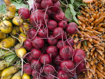 Produce - organic vegetables background Royalty Free Stock Images