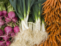 Produce - organic vegetables background Stock Photography