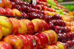 Produce: Red Delicious. Pasadena, California/USA - December 29 2015: Red Delicious apples in produce section at grocery store Stock Photography