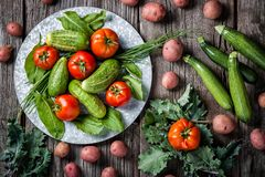 A produce scene of freshly harvested cucumber, tomatoes, red potatoes, kale, zucchini squash and kale on a rustic background. royalty free stock image