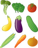 Produce - Vegetables. Common vegetables found at a produce stand or grocery store produce section stock illustration