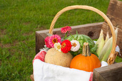Produce in a wicker basket Stock Image