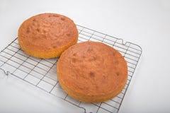 Producendo i pan di Spagna, 2 pan di Spagna che si raffreddano su un vassoio di raffreddamento del cavo Fotografie Stock