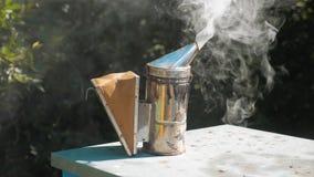 Producent dymny fajczany pipczyka palacza przyrząd dla odpędzać złe pszczoły Zwolnionego tempa wideo pasieka beekeeping styl życi zbiory wideo