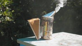 Producent dymny fajczany pipczyka palacza przyrząd dla odpędzać złe pszczoły Zwolnionego tempa wideo pasieka stylu życia beekeepi zbiory wideo
