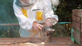 Producent dymny fajczany pipczyka palacza przyrząd dla stylu życia odpędzenia zła pszczół Zwolnionego tempa wideo pasieka beekeep zdjęcie wideo